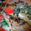Simple Herb Roasted Chicken