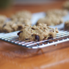 Quinoa Sunbutter Cookies with Cocoa Nibs and Pumpkin Seeds